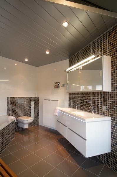 Plafonds in badkamers - pauldewitplafonds