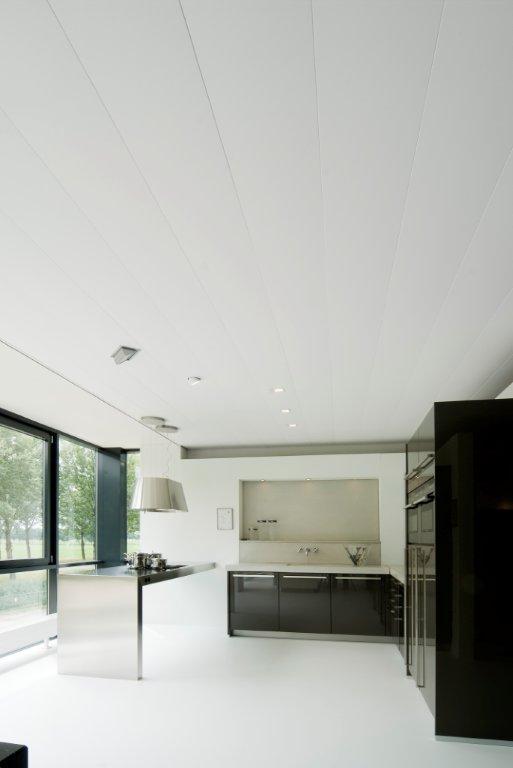 Paul de Wit | Aluminium Plafonds
